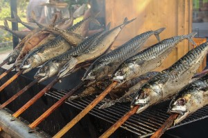 fische räuchern 1